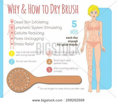 Skin Dry Brushing Infographic. Massage Line Directions, Why & How To Dry Brush. Benefits Of The Body