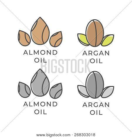 Almond And Argan Oil Icon. Almond Oil Logo. Argan Oil Vector Logo