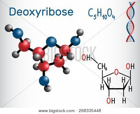 Deoxyribose Molecule, It Is A Monosaccharide (deoxy Sugar), It Forms Part Of The Backbone Of Dna. St