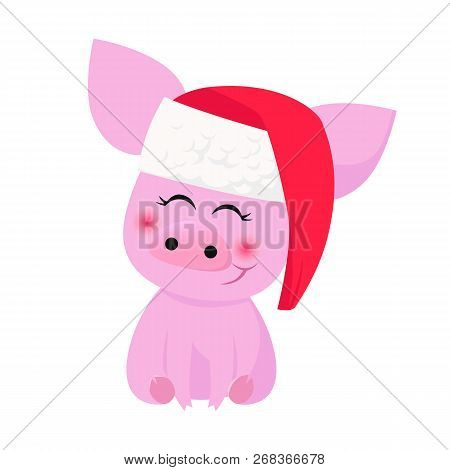 Cute Pig In Santa Hat Smiling. Anticipation, Xmas, Animal. Character Concept. Can Be Used For Topics