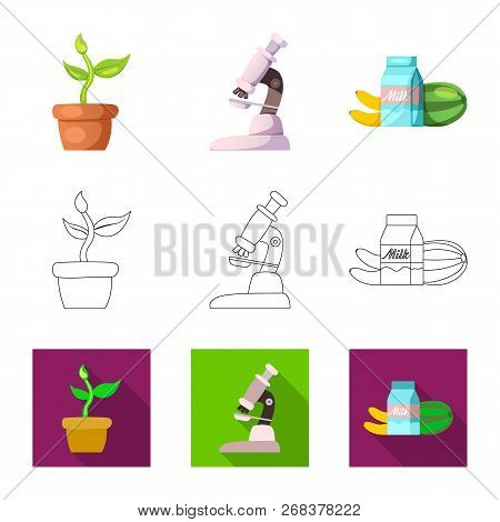 Isolated Object Of  And  Sign. Collection Of  And  Stock Vector Illustration.