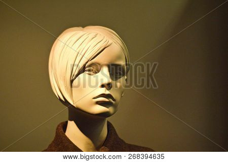 Cool Look Of A Mannequin. Cold Lady.