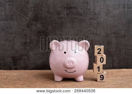 Year 2019 Financial Target, Budget, Investment Or Business Goals Concept, Pink Piggy Bank And Stack