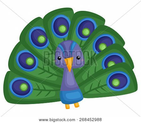 A Vector Of A Cute And Adorable Peacock