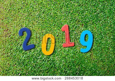 2019 Numbers On Green Grass. Happy New Year 2019