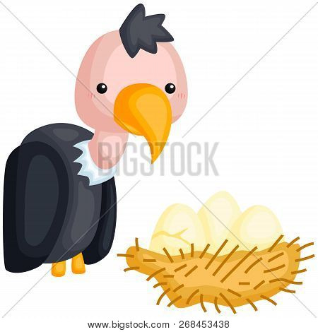 A Vector Of A Vulture And Its Egg