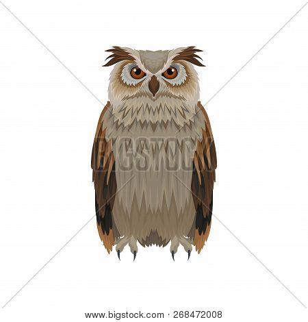 Great horned owl with brown plumage, front view. Large forest bird. Ornithology and fauna theme. Flat vector icon poster