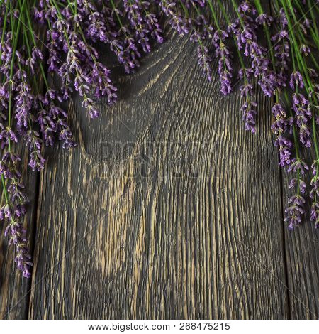The Background For The Label. Twigs Of Fragrant Fresh Lavender On Dark Boards