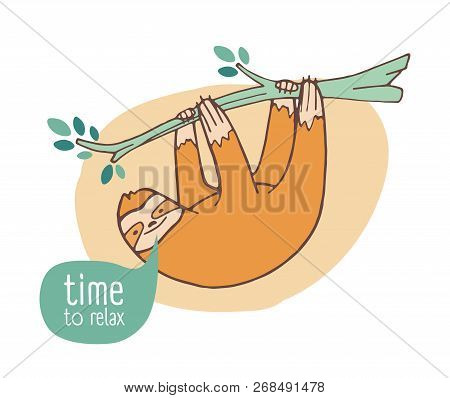 Funny Happy Sloth Hanging From Branch. Cute Lazy Wild Exotic Animal Relaxing On Tropical Tree. Adora