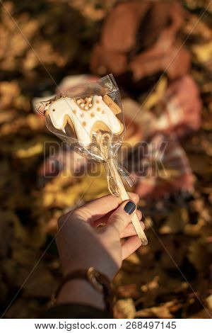Dreaming Concept - Closeup Of Gingerbread Cookie In Form Of Unicorn With Autumn Maple Leaves On The