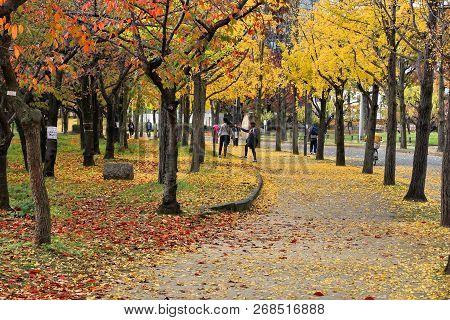 Osaka, Japan - November 22, 2016: People Enjoy Autumn Leaves In Osaka Castle Park In Japan. Osaka Be