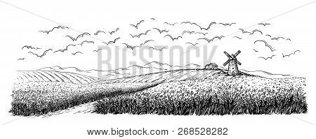 Rural Field With Ripe Wheat On Background Of Mill, Village And Clouds.