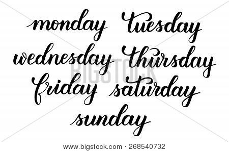 Days Of The Week Weekdays And Weekend Modern Brush Calligraphy Isotated On A White Background. Vecto