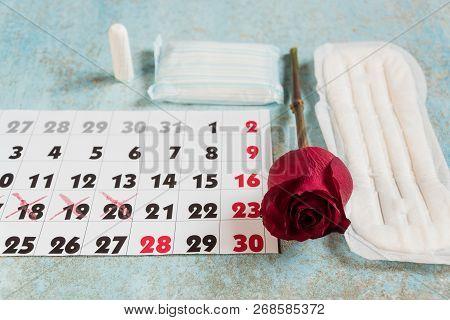 Menstrual Pads, Blood Period Calendar And Clocks. Menstruation Period Pain Protection. Feminine Hygi