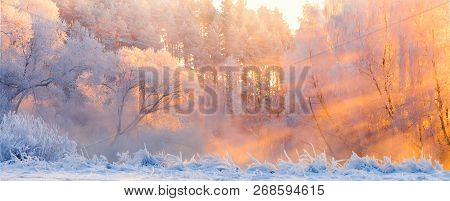 Winter Landscape. Beautiful Christmas Morning Outdoors. Winter Forest With Bright Sunshine And Sunbe