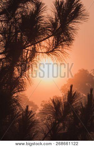 Landscape With Foggy Hills And Trees In Winter At Sunrise. Misty Morning Golden Sunrise, Vintage Fil