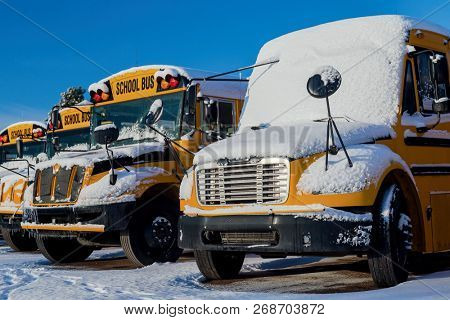 A row of school buses after a snowfall.