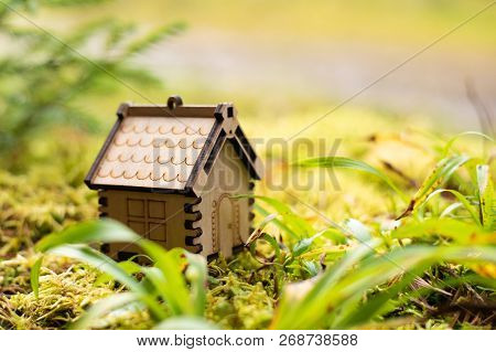 Wooden House Model In The Forest. Concept