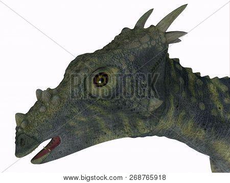Dracorex Dinosaur Head 3d Illustration - Dracorex Was A Herbivorous Biped Dinosaur That Lived In Nor