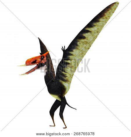 Dsungaripterus Pterosaur Standing 3d Illustration - Dsungaripterus Was A Pterosaur Raptor Bird That