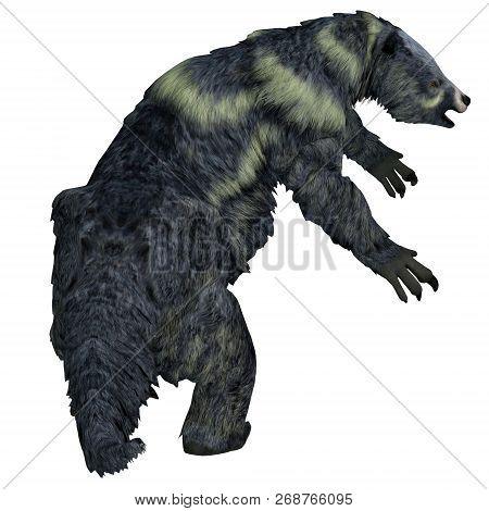 Eremotherium Sloth Tail 3d Illustration - Eremotherium Was A Herbivorous Giant Ground Sloth That Liv