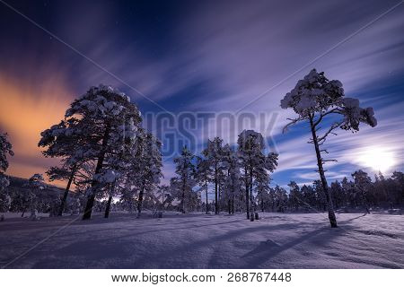 Full Moon Light Over Snow Covered Forest In Heia, Grong Area, North Norway.