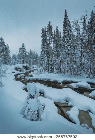 Snow In The Forest By The Frozen Stream, Heia, Norway