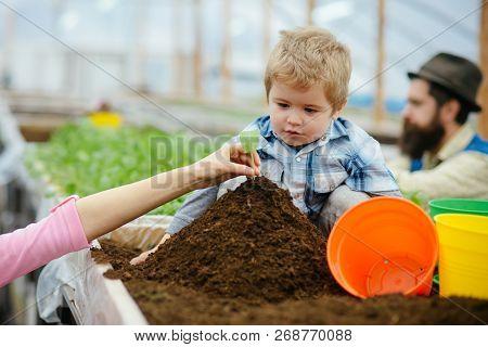 Family Values. Family In Greenhouse. Happy Family Values. Family Values Concept. Values And Trust