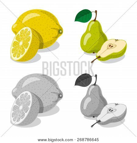 Isolated Object Of Vegetable And Fruit Logo. Set Of Vegetable And Vegetarian Stock Symbol For Web.