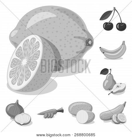Isolated Object Of Vegetable And Fruit Icon. Set Of Vegetable And Vegetarian Vector Icon For Stock.