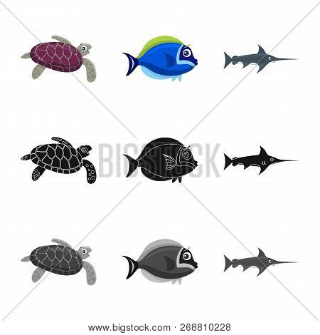 Isolated Object Of Sea And Animal Logo. Set Of Sea And Marine Vector Icon For Stock.