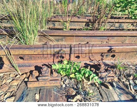 Rusty abandoned rails. Terrible smell rotten old wooden ties with phenol asphalt paint. Environmental burden environmental hazards. poster
