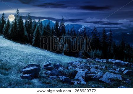 Alpine Summer Landscape Composite At Night In Full Moon Light. Rock Formation Near The Spruce Forest