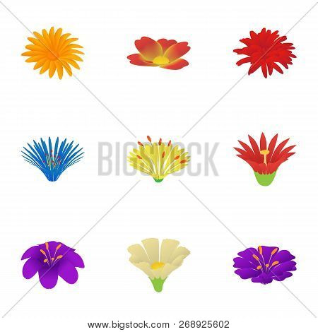 Passiflora Icons Set. Cartoon Set Of 9 Passiflora Vector Icons For Web Isolated On White Background