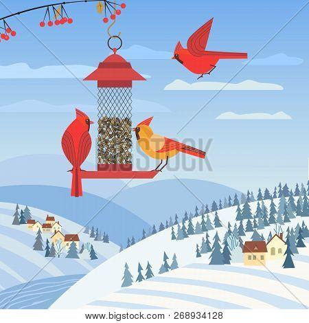 Red Cardinal Birds On Feeder. Birdfeeding Near Winter Rural Community. Small Bird Of Backyard Minima