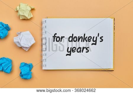 For Donkey Years - English Idiom Hand Lettering On Wooden Blocks.