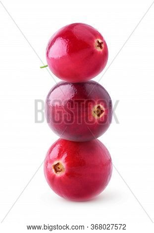 Isolated Cranberries Pyramid. Three Fresh Cranberries On Top Of Each Other Isolated On White Backgro