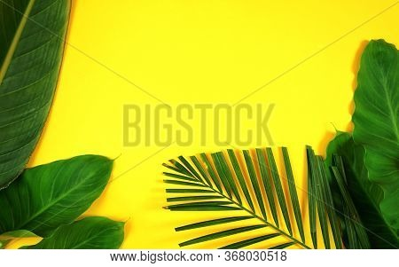Summer Flat Lay With Tropical Leaves, Palm Fronds On Bright Yellow Background
