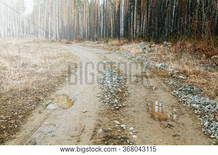An Old Road With Rocks And Mud With Puddles. Dirt Road In The Forest With Mud.