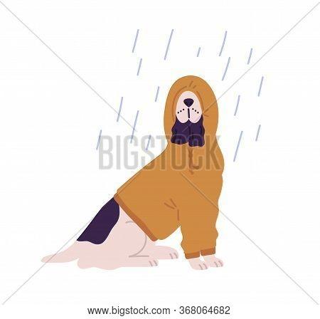 Funny Dog Wearing Hoodie Under Rain Vector Flat Illustration. Cute Domestic Animal Dressed In Hood A