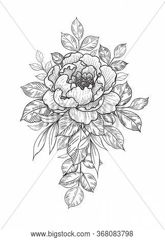 Hand Drawn Flower And Leaves Bunch Isolated On White. Vector Line Art Monochrome Elegant Floral Comp