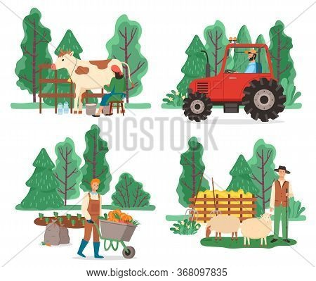 Collection Of Farming Equipment And People Working On Field. Man Transporting Harvested Pumpkins, Sh