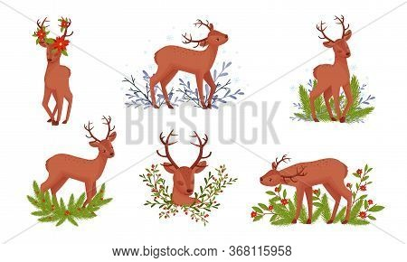 Deer With Antlers Standing In Floral Branches Vector Set