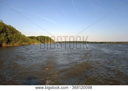 Panorama Of Natural Forests On The Banks Of The Danube River That Bathes The Calarasi Pond, Between