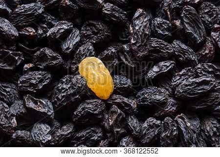 Dark Raisins With Single Golden Raisins As Background. Vegetarian Healthy Sweet Snack. Organic Food.