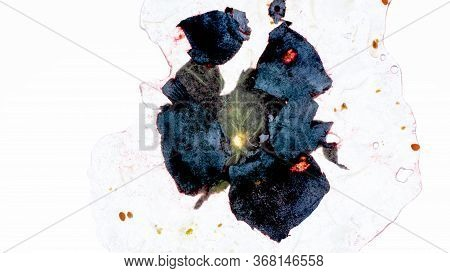Macro Isolated Photo Of Juicy Crushed And Squeezed Blueberry Or Currant On White Background. Abstrac