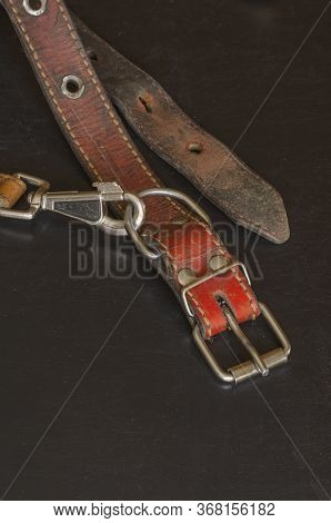 Old Red Leather Dog Collar With A Leash. A Close-up Of A Shabby And Cracked Dirty Collar On A Dark T