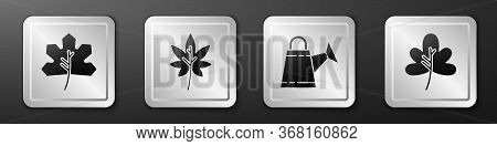 Set Leaf Or Leaves, Leaf Or Leaves, Watering Can And Leaf Or Leaves Icon. Silver Square Button. Vect