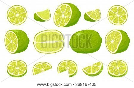 Fresh Limes With Leaves. Collection Of Different Lime Views.