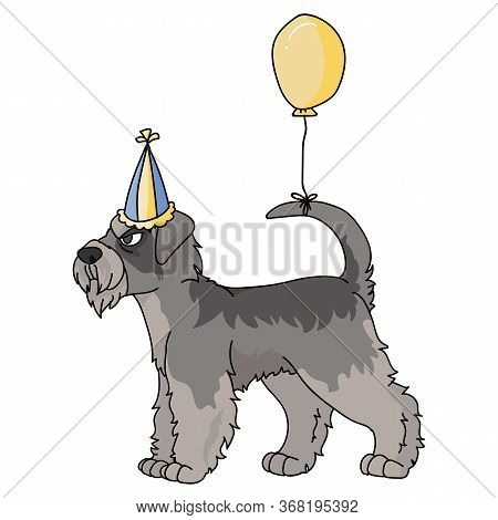 Cute Cartoon Schnauzer Dog With Party Hat Vector Clipart. Pedigree Kennel Doggie Breed. Purebred Dom
